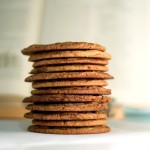 Molasses-Spice cookies by ilmungo
